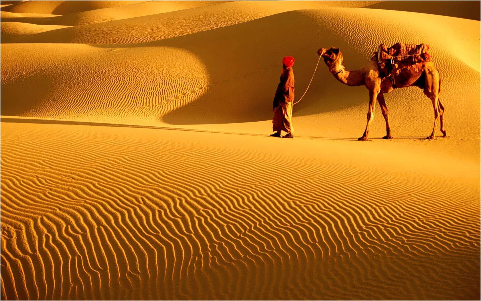 Must Visit Places in India - Thar Desert